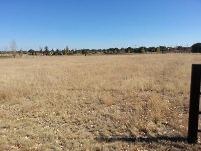 Prescott Residential Lots & Land For Sale: 9045 N American Ranch Road