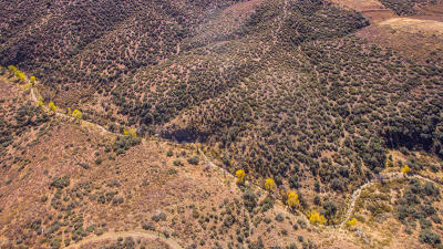 Dewey-humboldt Residential Lots & Land For Sale: 11153 E Rocky Hill Road