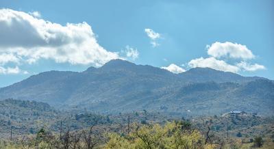 Yavapai County Residential Lots & Land For Sale: S Heritage Peak Road