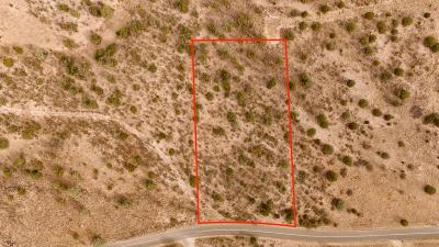 Paulden Residential Lots & Land For Sale: 1020 E Verde Ranch Road