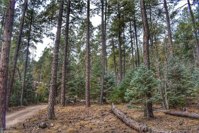 Prescott Residential Lots & Land For Sale: Tunnel