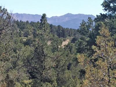 Prescott Residential Lots & Land For Sale: 15035 N Four Mile Creek Lane