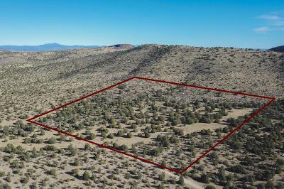 Prescott Residential Lots & Land For Sale: N Indian Ruins Road