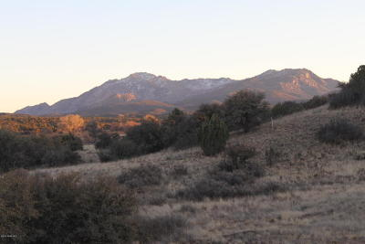 Prescott, Prescott Valley, Chino Valley, Dewey-humboldt Residential Lots & Land For Sale: Lot 83 C N Puntenneny Road