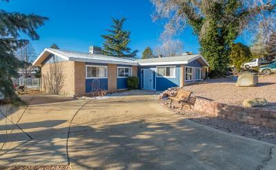 Prescott Single Family Home For Sale: 427 Stewart Circle