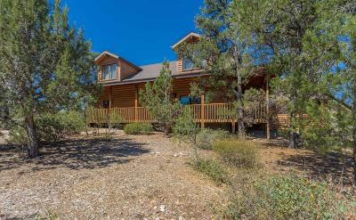 Prescott Single Family Home For Sale: 13868 N Grey Bears Trail