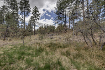 Prescott Residential Lots & Land For Sale: 955 W Sunlit Drive