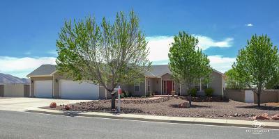 Prescott Valley Single Family Home For Sale: 13415 E Palomino Lane