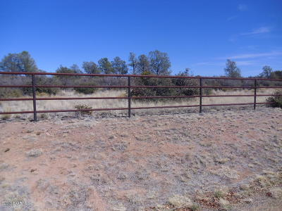 Prescott Residential Lots & Land For Sale: 9565 N Equine Road