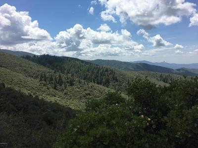 Prescott, Dewey-humboldt, Prescott Valley, Chino Valley Residential Lots & Land For Sale: 7555 S Forest Rd 667 Road