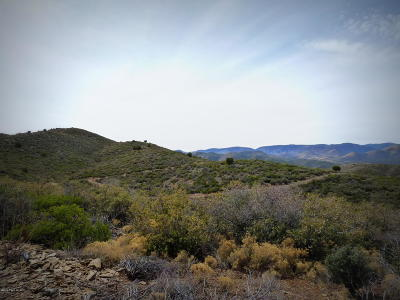 Dewey-humboldt Residential Lots & Land For Sale: 01 Rattlesnake Trail