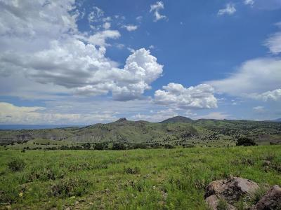 Paulden Residential Lots & Land For Sale: Still Valley (351a)