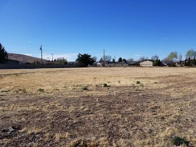 Prescott Valley Residential Lots & Land For Sale: 2860 N Pine View Drive