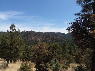 Prescott Residential Lots & Land For Sale: 5025 S Blue Jay Road