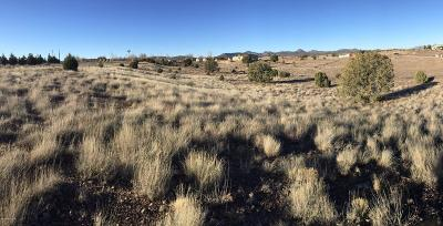 Paulden Residential Lots & Land For Sale: W Little Ranch Road