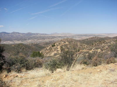 Dewey-humboldt Residential Lots & Land For Sale: 15745 E White Drive