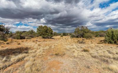Prescott Residential Lots & Land For Sale: 5565 Deer Spring Place