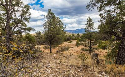 Prescott Residential Lots & Land For Sale: 5955 W Almosta Ranch Road