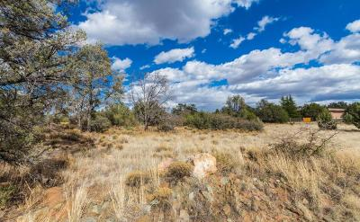 Prescott Residential Lots & Land For Sale: 13215 N Iron Hawk Drive
