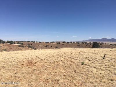 Dewey-humboldt Residential Lots & Land For Sale: 10200 E Old Black Canyon Highway
