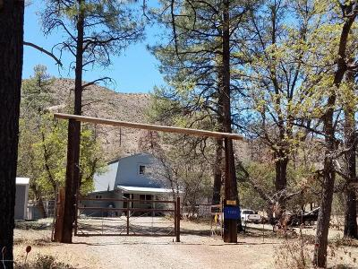 Mayer Single Family Home For Sale: 13210 S Pack Train Trail