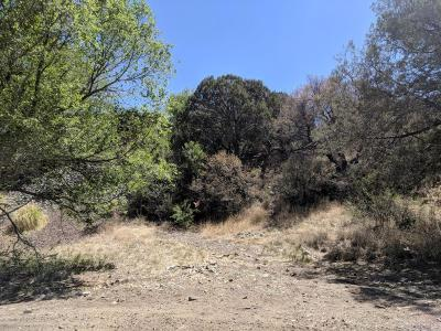 Residential Lots & Land For Sale: 209 S Rush Street