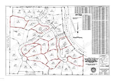 Residential Lots & Land For Sale: 2110 Burlwood Drive