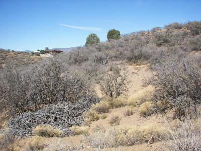 Dewey-humboldt Residential Lots & Land For Sale: Off White Dr.
