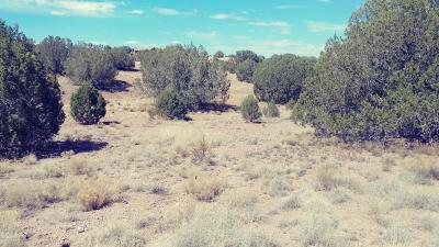 Chino Valley Residential Lots & Land For Sale: 2800 W Eagle Ridge Drive