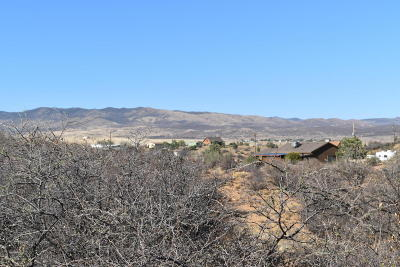 Dewey-humboldt Residential Lots & Land For Sale: 12010 E Rock View Lane