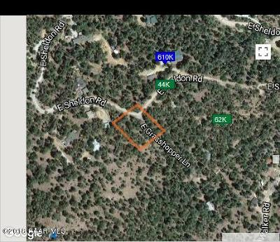 Prescott Residential Lots & Land For Sale: 3400 E Sheldon Road