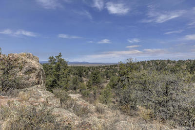 Prescott Residential Lots & Land For Sale: 12780 W Cooper Morgan Trail