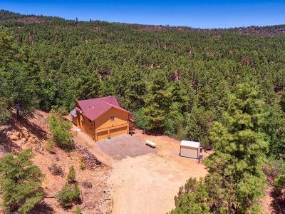 Prescott AZ Single Family Home For Sale: $439,000