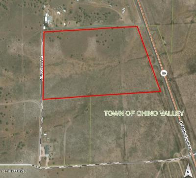 Chino Valley Residential Lots & Land For Sale: Hwy 89