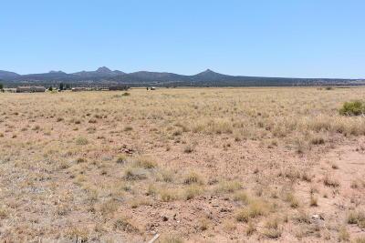 Paulden Residential Lots & Land For Sale: 24400 N Big Springs Ranch Road