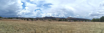 Chino Valley Residential Lots & Land For Sale: N Reed (Lot 2) Road