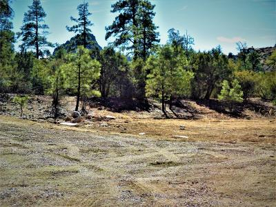 Residential Lots & Land For Sale: 1542 Sierry Peaks Drive