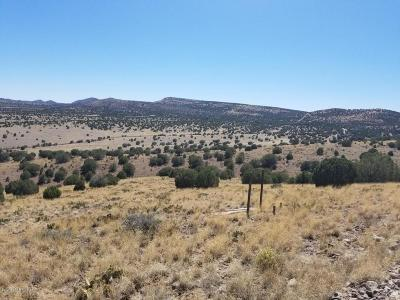 Chino Valley Residential Lots & Land For Sale: N Nighthawk