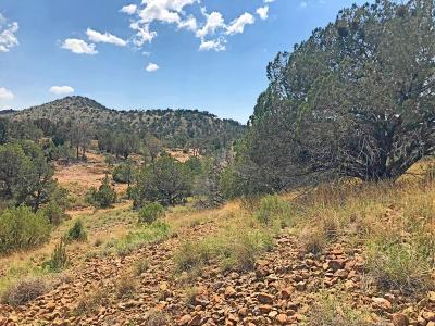 Chino Valley Residential Lots & Land For Sale: 0000 W Hidden Canyon Road