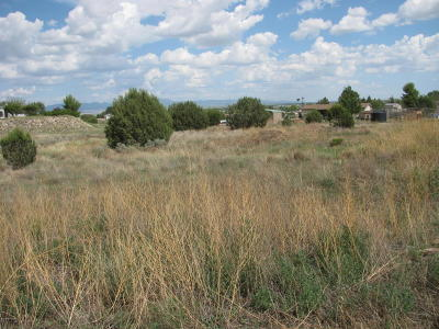 Chino Valley Residential Lots & Land For Sale: 2915 N Aztec Place