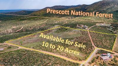 Dewey-Humboldt Residential Lots & Land For Sale: E Roper (20 Ac) Way