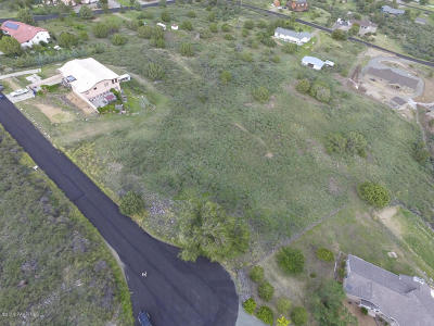 Prescott Residential Lots & Land For Sale: 6581 N Shauna Drive