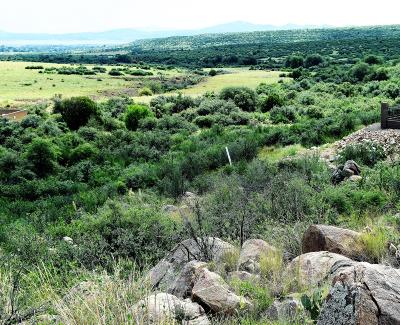 Stoneridge Residential Lots & Land For Sale: 1432 N Cloud Cliff Pass