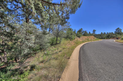 Prescott Residential Lots & Land For Sale: 5230 E Fitzmaurice Drive