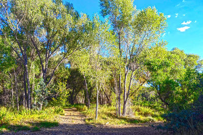 Prescott Residential Lots & Land For Sale: Waters Edge Way
