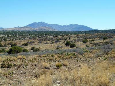 Chino Valley Residential Lots & Land For Sale: 3620 W Dove Road