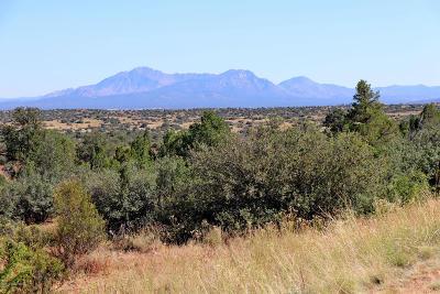 Prescott Residential Lots & Land For Sale: 0-1 Jasper Ridge (Owner Carry) Road