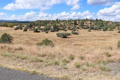 Prescott Residential Lots & Land For Sale: 0-3 Jasper Ridge (Owner Carry) Road