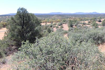 Prescott Residential Lots & Land For Sale: 0-2 Jasper Ridge (Owner Carry) Road