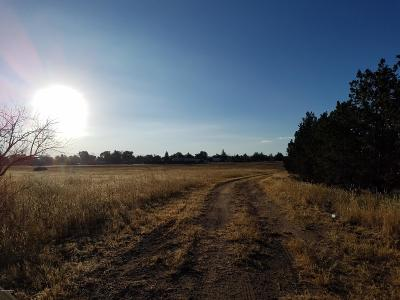 Chino Valley Residential Lots & Land For Sale: B E Rd 1 South